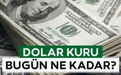 Dolar kuru bugün ne kadar? (23 Haziran 2021 dolar – euro fiyatları)